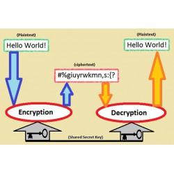 Scout Patrol: Encryption