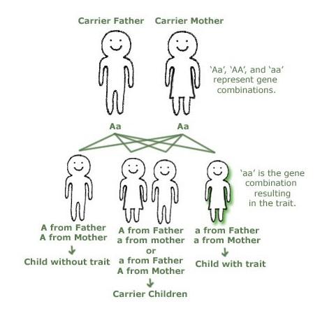 Hereditary Traits