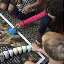 Using Fun Robots to Learn Simple Coding Techniques