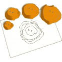 Make a Topographic Map