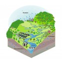 A Watershed Community