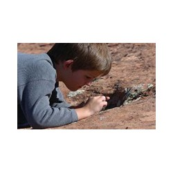 Rocks and Minerals. Photo Credit : National Park Service