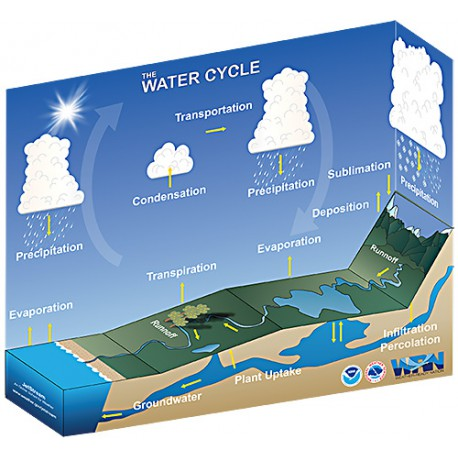 Water Cycle Paper Craft Photo credit: NOAA