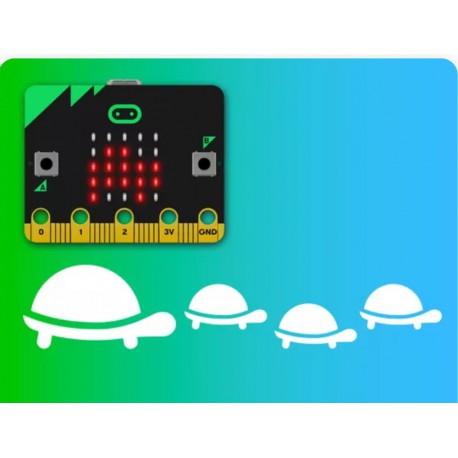Saving Sea Turtles. Image credit: BBC micro:bit