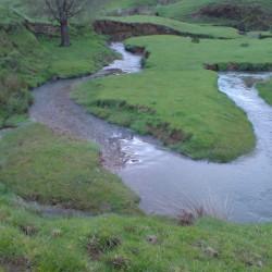 Stream Landscapes